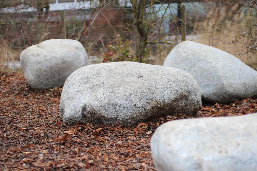 Herrenberg Steine